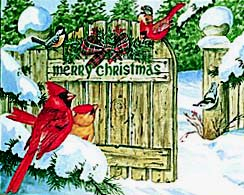 National Wildlife Federation Christmas Cards